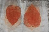 Nature's Heart by Julia Bond, Textiles, Eco dye/print.